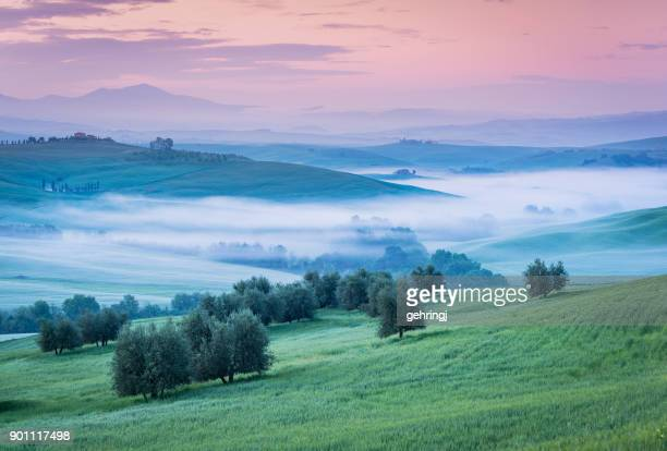 Morning landscape of Tuscany