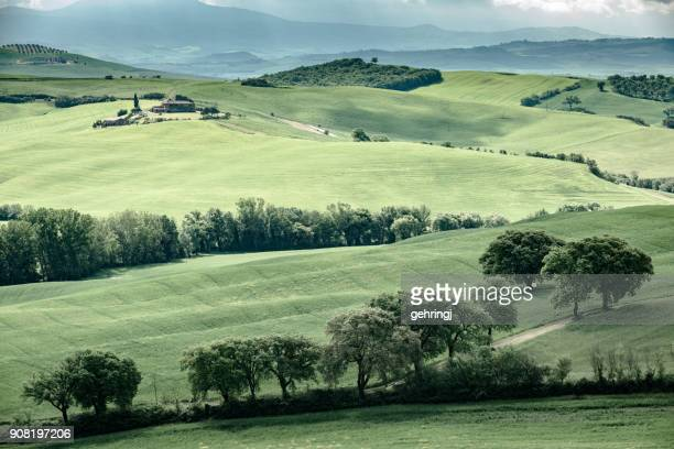 morning landscape of tuscany - capella di vitaleta stock pictures, royalty-free photos & images