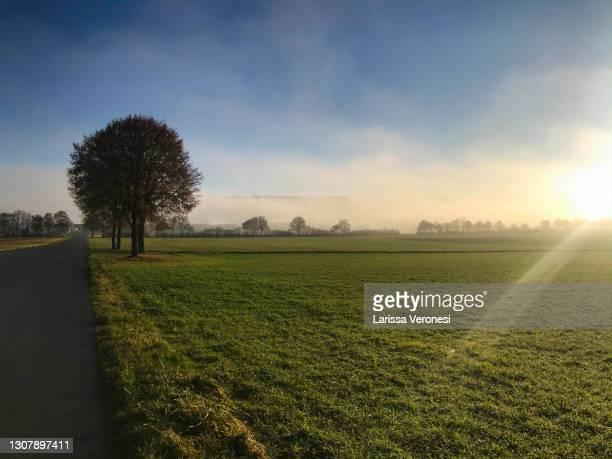 morning landscape with sunrise and fog - larissa veronesi stock-fotos und bilder