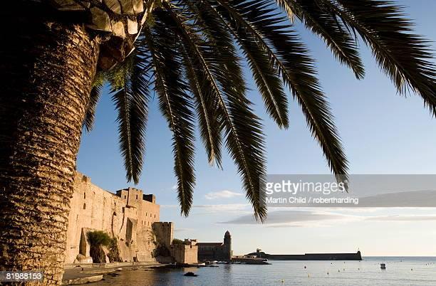 morning light, eglise notre-dame-des-anges, collioure, pyrenees-orientales, languedoc, france, europe - collioure photos et images de collection