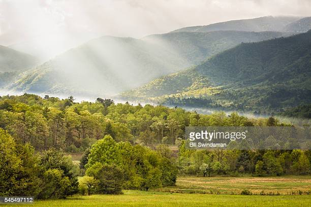 morning light in cades cove great smoky mountains national park - parque nacional das great smoky mountains - fotografias e filmes do acervo