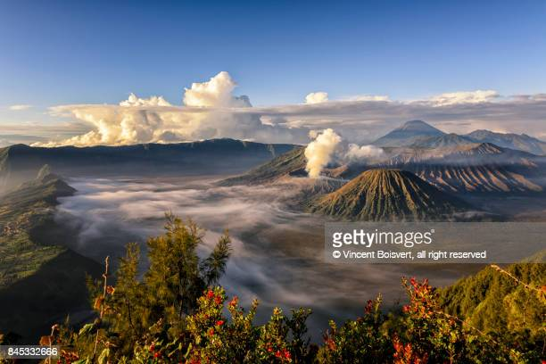 morning light on mount bromo, java, indonesia - java indonesia fotografías e imágenes de stock