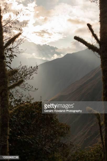 Morning Light on the Inca Trail leading to Machu Picchu