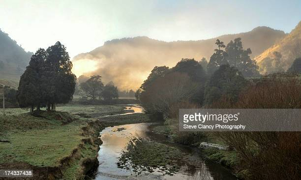 morning light - gisborne stock photos and pictures