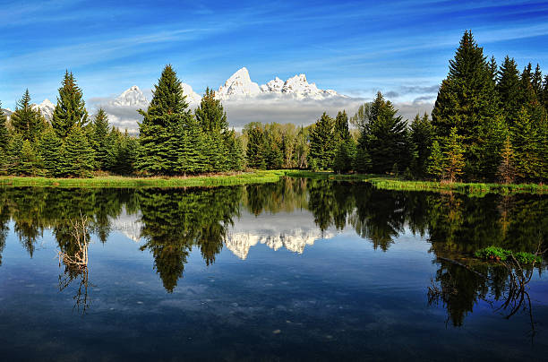 Morning Magic At Schwabacher Wall Art