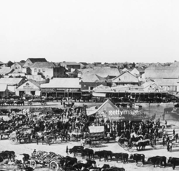 Morning market in Kimberley South Africa circa 1888