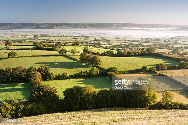 morning mist across somerset levels at glastonbury, somerset, england, uk - 2010 stock pictures, royalty-free photos & images