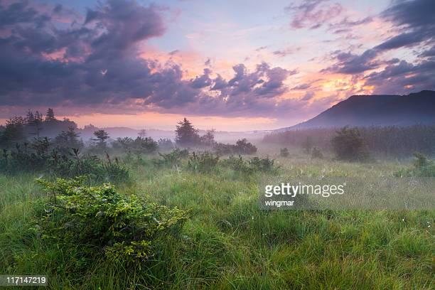 Morgen Nebel in einem moor mit Dramatischer Himmel, Bayern, Deutschland
