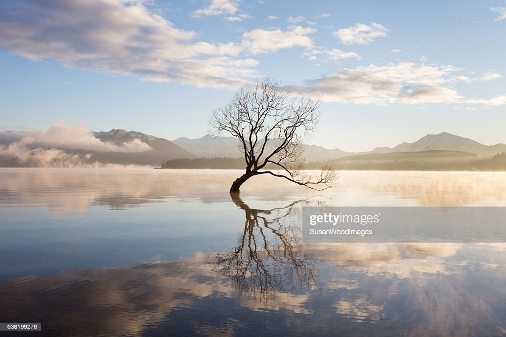 Morning mist on lake : Stockfoto