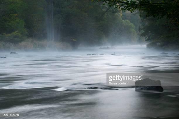 Morning mist over the Thaya River, Thaya Valley National Park, Merkersdorf, Hardegg, Lower Austria, Austria