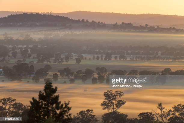 morning mist - wagga wagga stock pictures, royalty-free photos & images