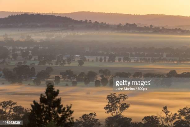 morning mist - ワガワガ ストックフォトと画像