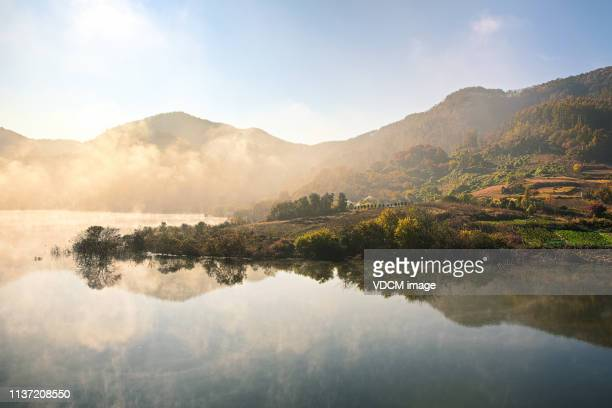 morning of yongdam lake vd702 - water's edge stock pictures, royalty-free photos & images