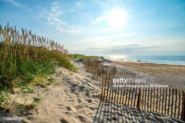 morning on the beach - outer banks stock pictures, royalty-free photos & images