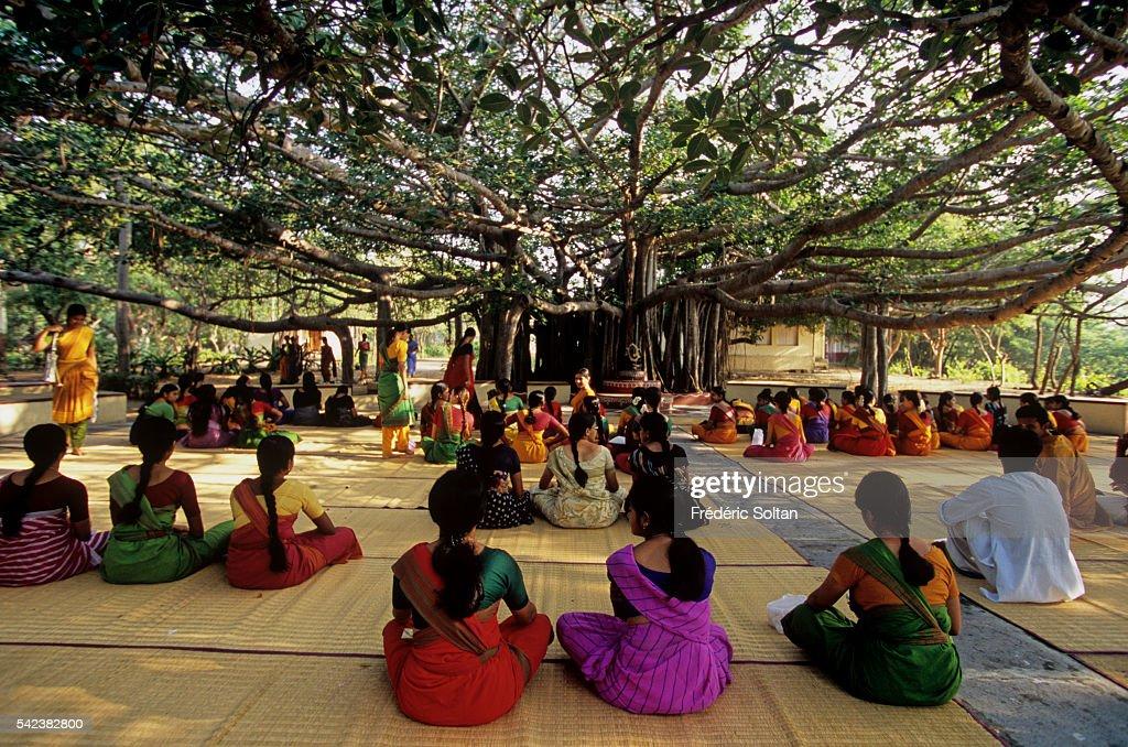 Bharatanatyam Classical Dance from Kalakshetra Foundation : News Photo