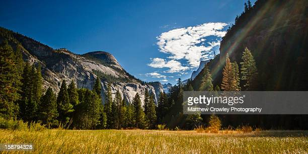 morning rays in yosemite valley - yosemite valley stock photos and pictures
