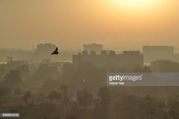 Morning rays-misty morning-Ahmedabad