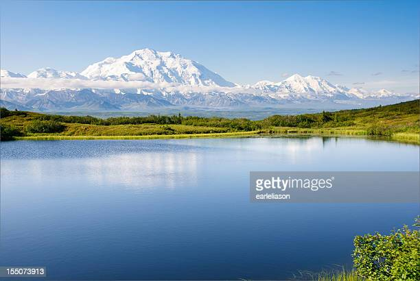 morning reflection - mt mckinley stock photos and pictures