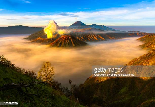 a morning scene from the bromo-tengger-semeru national park at sunrise, east java, indonesia. - volcanic activity stock pictures, royalty-free photos & images