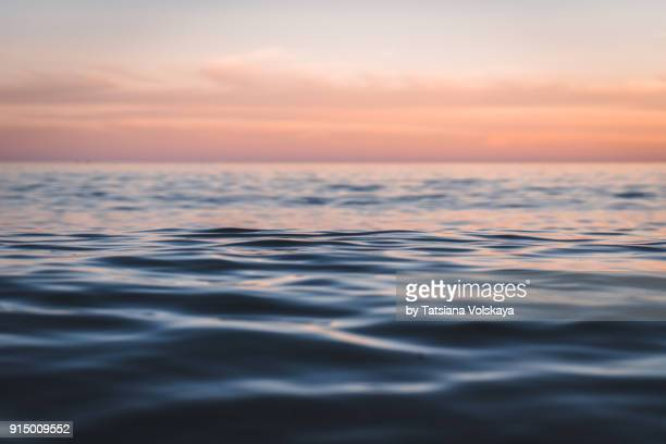 morning sea close-up view romantic beautiful background - horizon over water stock pictures, royalty-free photos & images
