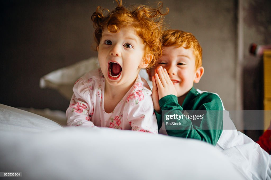 Morning Silliness : Stock Photo
