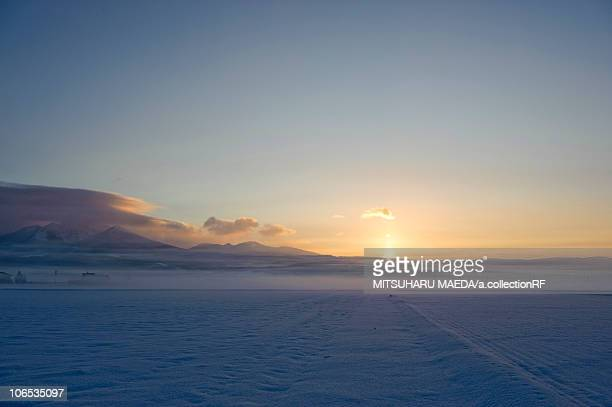 Morning Snow-Covered Landscape