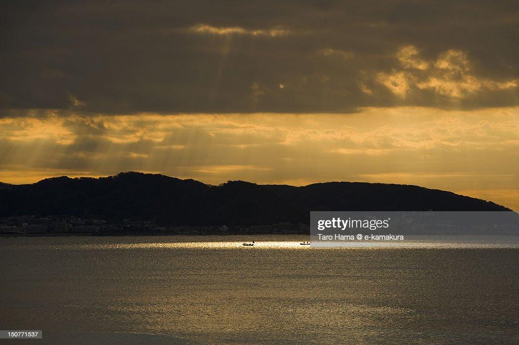 Morning spot light : Stock-Foto