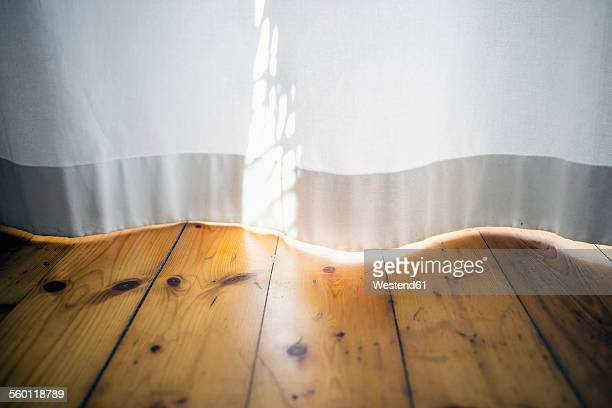 Morning sunlight on a white curtain