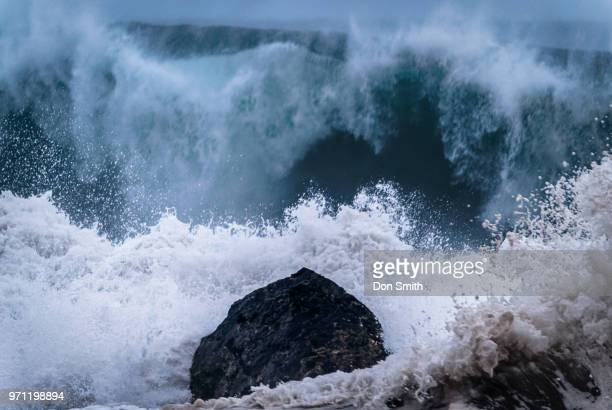morning surf - don smith stock pictures, royalty-free photos & images