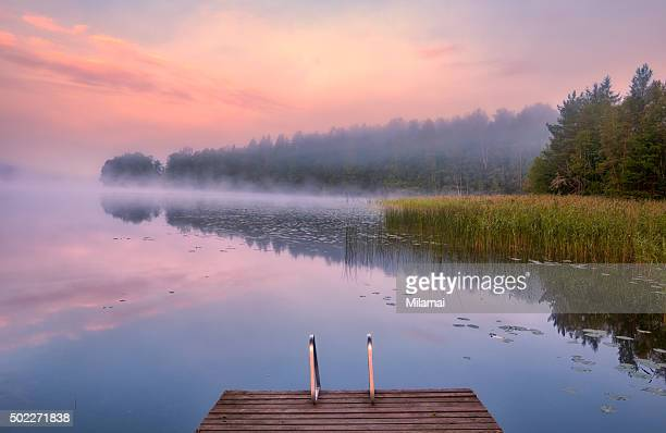 morning swim - finland stock pictures, royalty-free photos & images