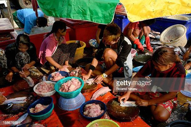Morning trade and work at the Thiri Mingalar Fish Market main fish market along the Hline river..