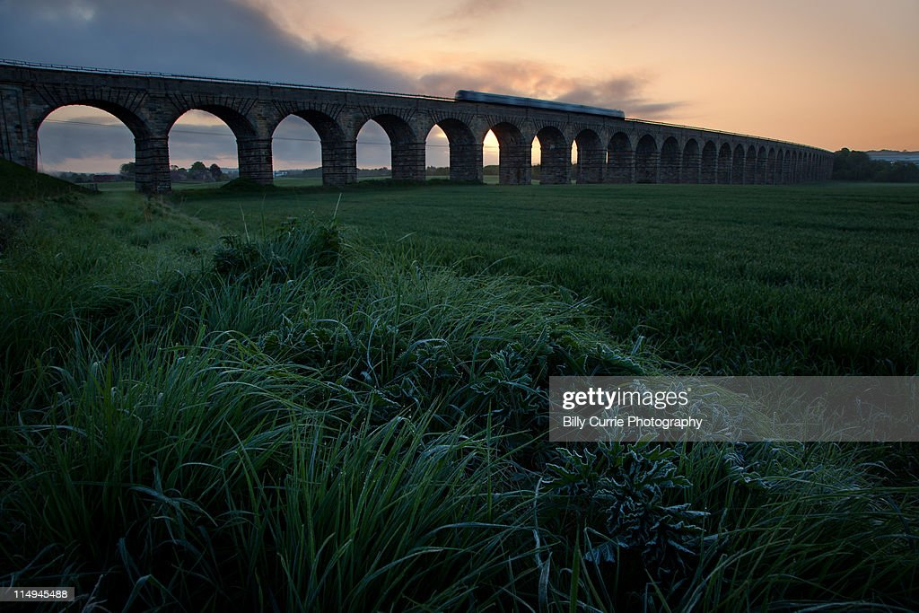 Morning train going over Broxburn Viaduct : Stock Photo