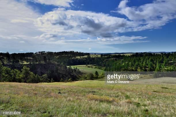 a morning under blue skies and clouds - hügelkette stock-fotos und bilder