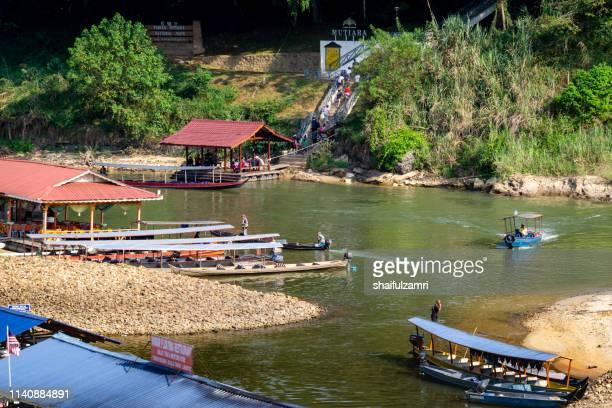 morning view at taman negara, pahang, malaysia. - shaifulzamri stock pictures, royalty-free photos & images