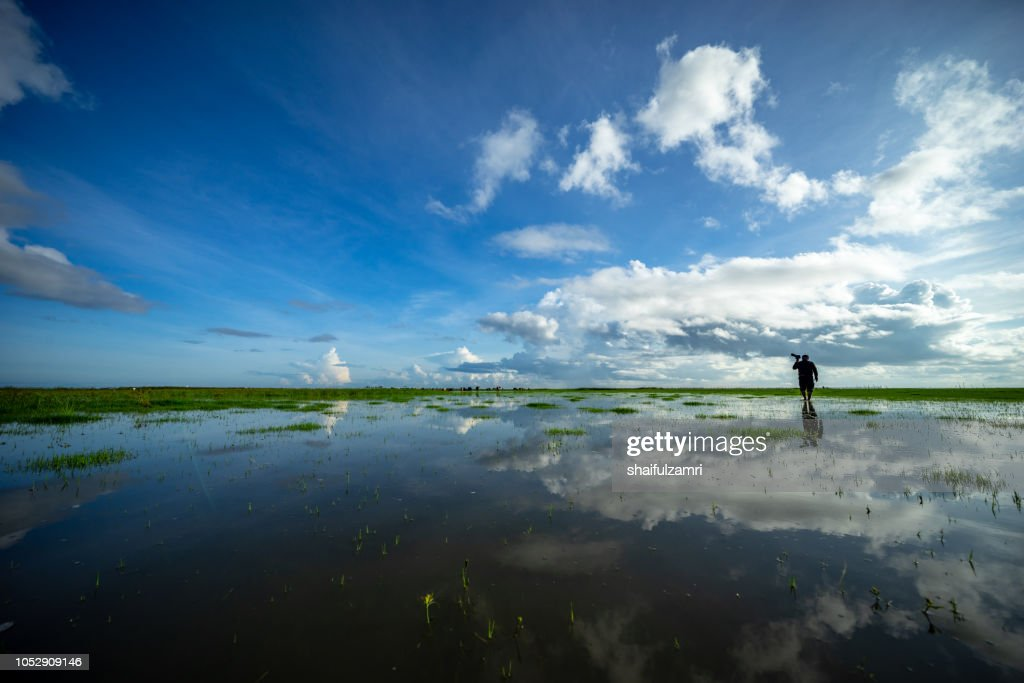 Morning view at Thale Noi Waterfowl Reserve Park in Phatthalung, Thailand. : Stock Photo