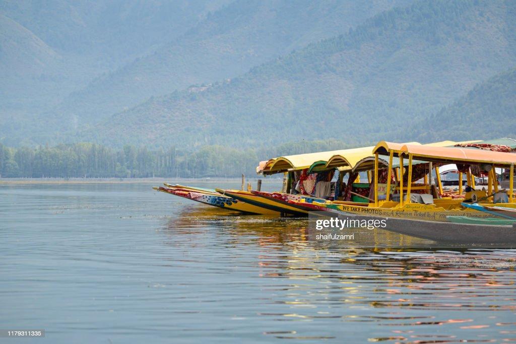 Morning view during shikara ride at Dal Lake, Kashmir. : Stock Photo
