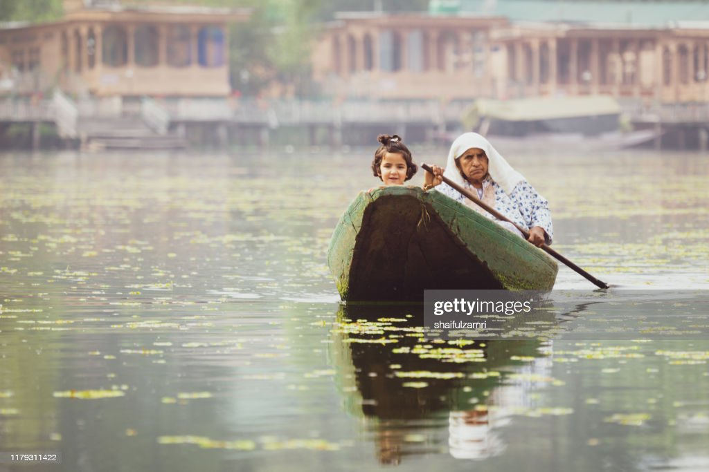 Morning view during shikara ride at Dal Lake, Kashmir. : Stock Photo