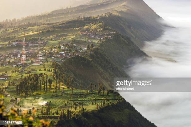 morning view of cemoro lawang - shaifulzamri stock-fotos und bilder