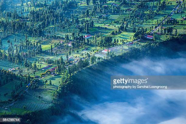 morning view of cemoro lawang village - mt semeru stock pictures, royalty-free photos & images