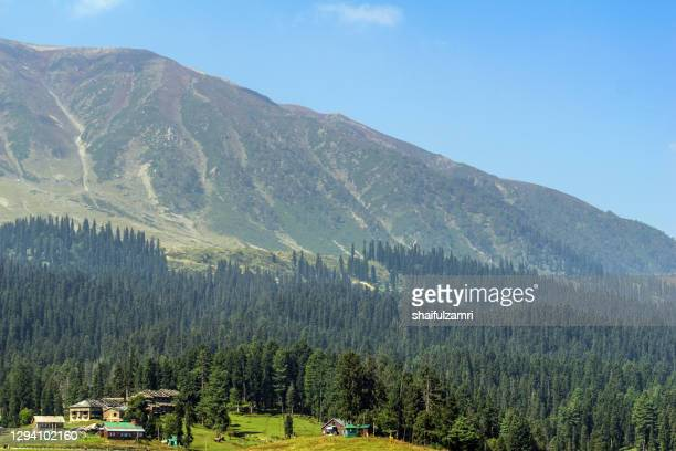 morning view of gulmarg valley at kashmir, india. - shaifulzamri stock pictures, royalty-free photos & images