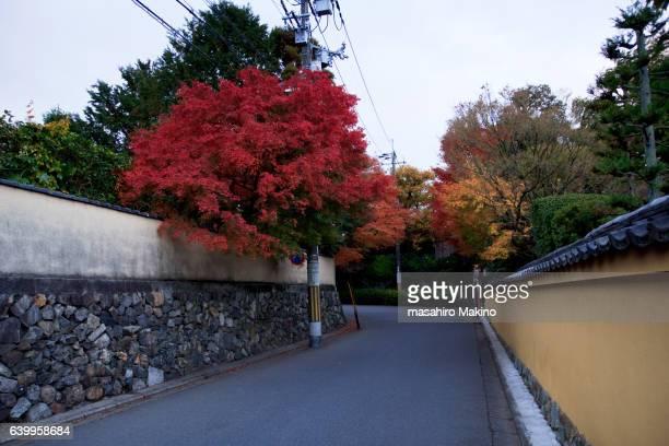 Morning View of Higashiyama District