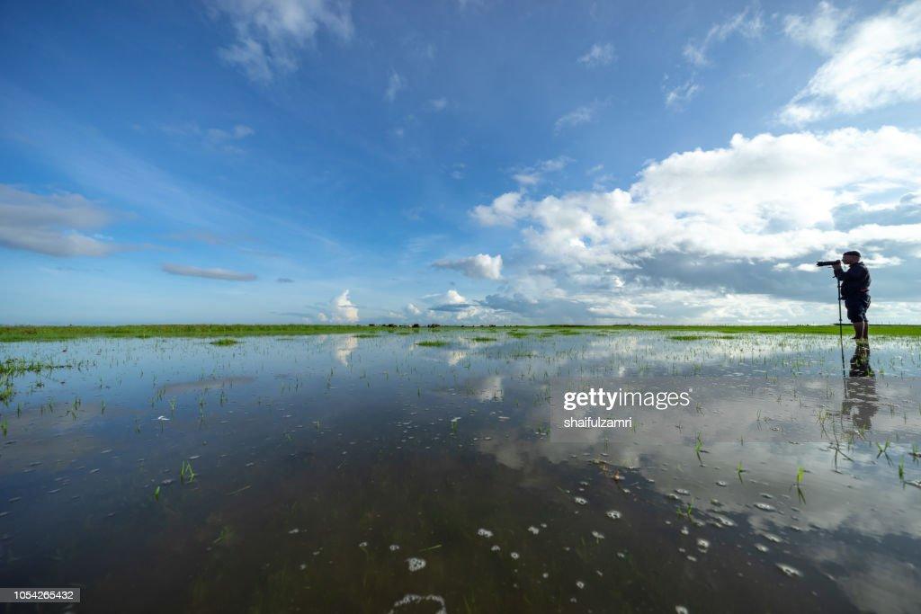 Morning view of lake Thale Noi, Phatthalung of Thailand. : Stock Photo