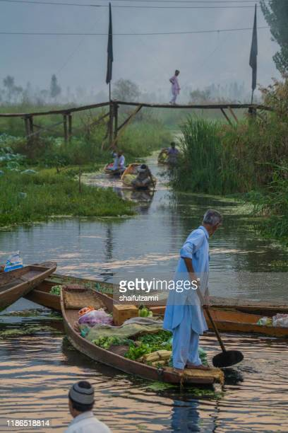 morning view of sellers on shikara (traditional wood boat) preparing their goods at floating market at dal lake - shaifulzamri stock pictures, royalty-free photos & images