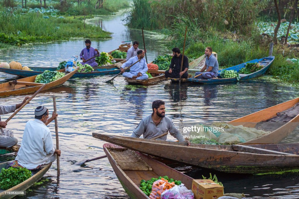 Morning view of traditional floating market at Dal Lake of Kashmir, India. : Stock Photo