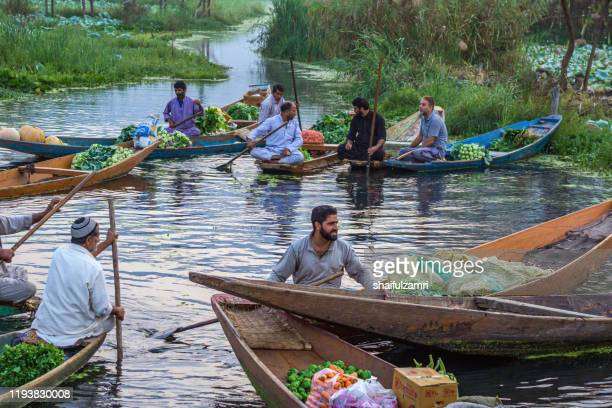 morning view of traditional floating market at dal lake of kashmir, india. - shaifulzamri stock pictures, royalty-free photos & images