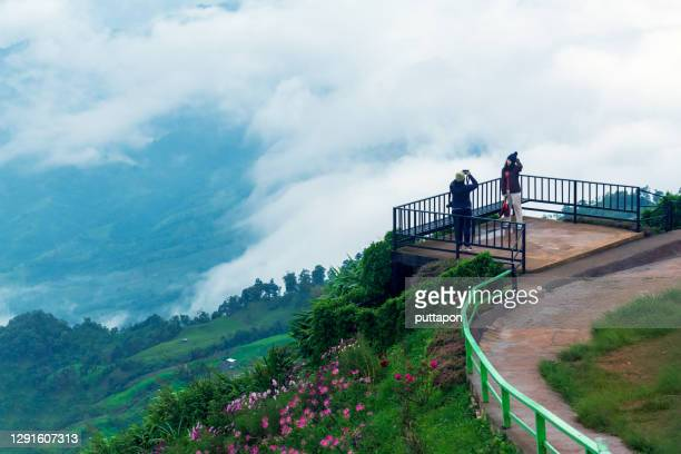 morning view point with mountain mist and with a beautiful flower garden in  phu thap boek, phetchabun province - boek stock pictures, royalty-free photos & images