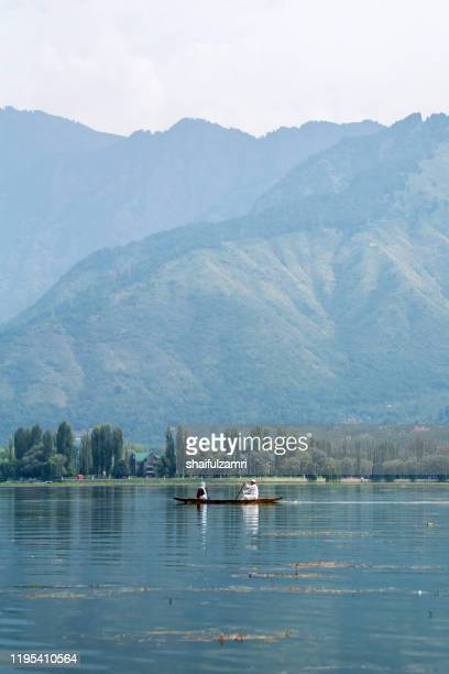 morning view with man paddling his shikara at kashmir, india. - shaifulzamri foto e immagini stock