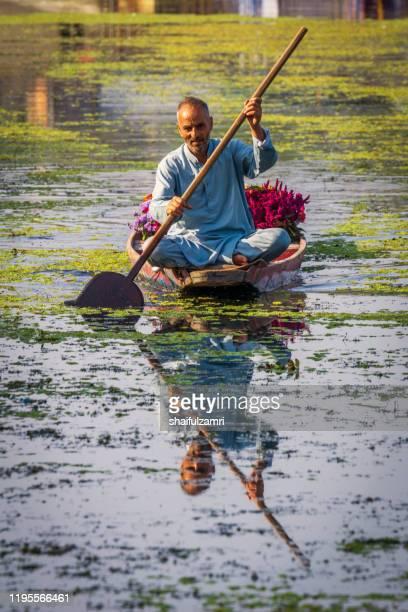 morning view with man paddling his shikara at kashmir, india. - shaifulzamri stock pictures, royalty-free photos & images