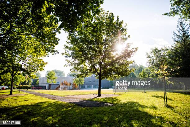 morning walk in the park - natural parkland stock pictures, royalty-free photos & images