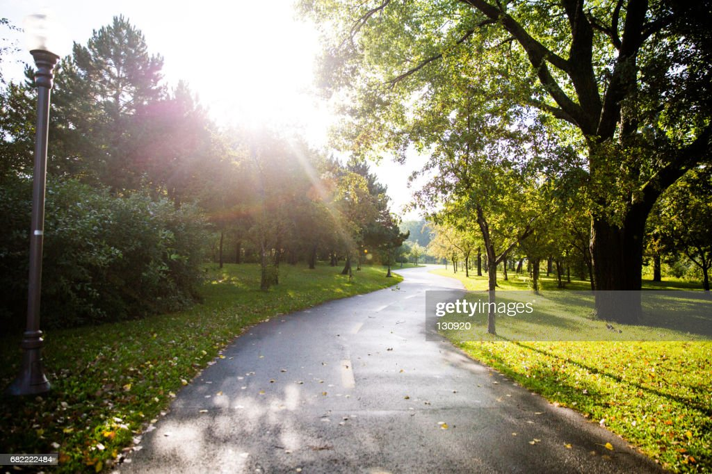 Morning Walk in the Park : Stock Photo
